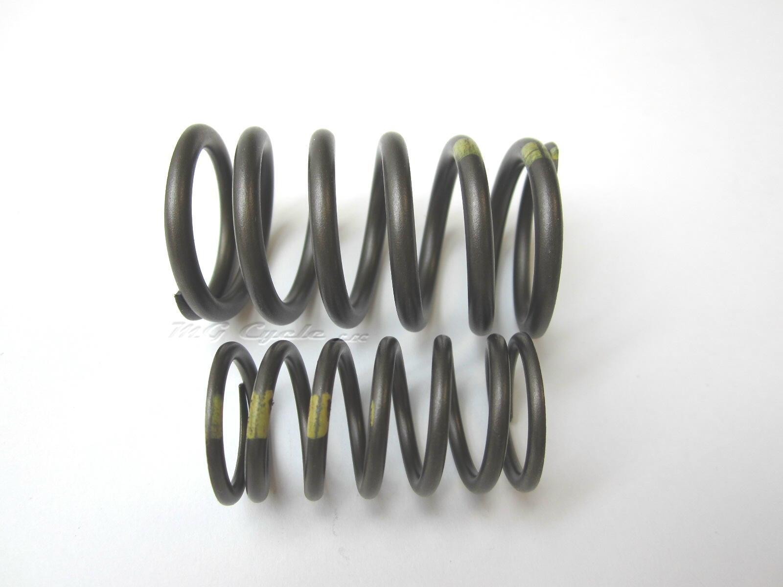 Valve spring pair, inner and outer, big twin models