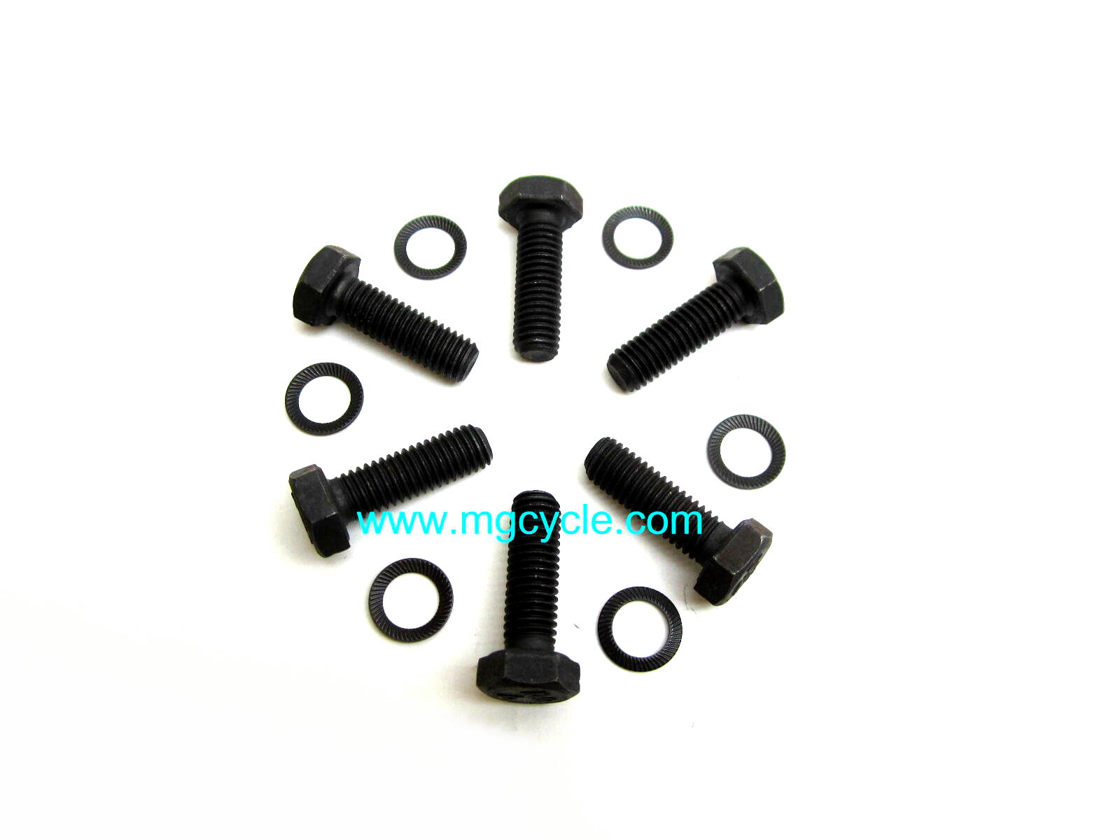 Flywheel bolt kit, 10.9 bolts with schnor lock washers - Click Image to Close