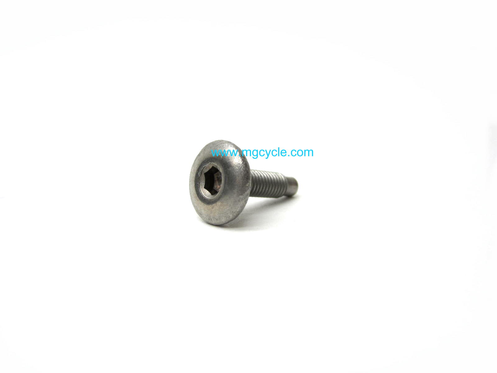 OEM Aprilia body panel screw